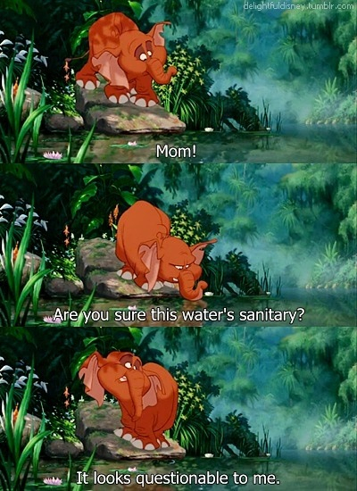 tantor elephant questions the sanitary nature of the water