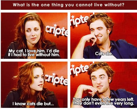 Kristen Stewart Robert Pattinson Talk About Cats The Most