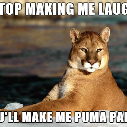 stop making me laugh you�ll make me puma pants meme