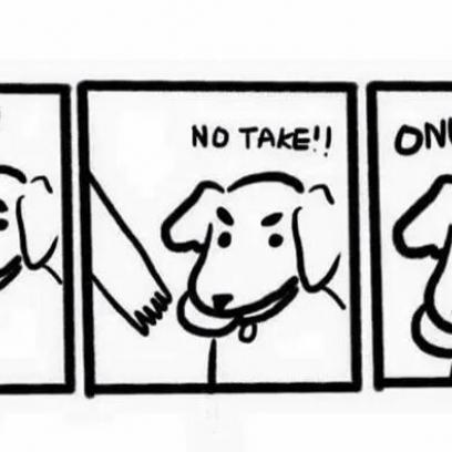 no take only throw dog logic in ic strip Derp Meme